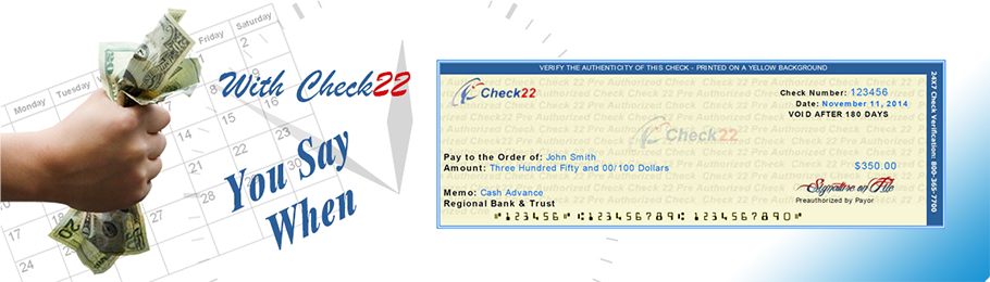 Online Check Payment Service